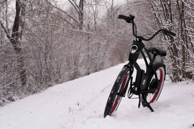 YouMo im Schnee