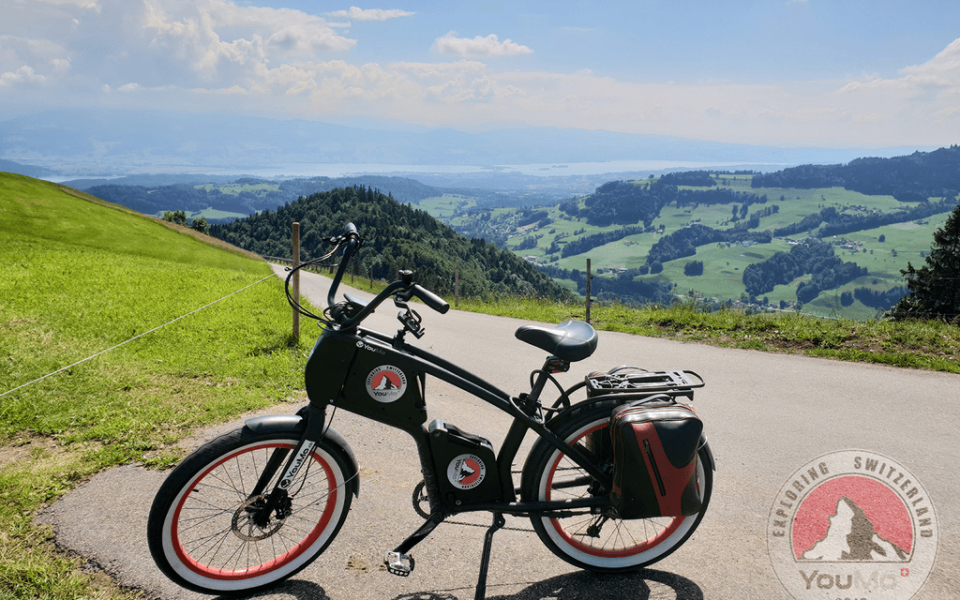 13 06 Alp Scheidegg.jpg