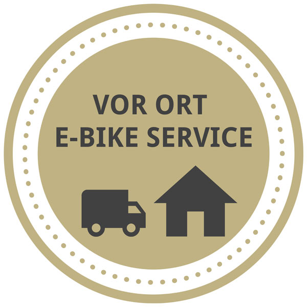 icon-vor-ort-service